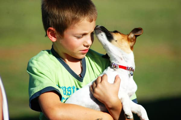 Собака в подарок мальчику