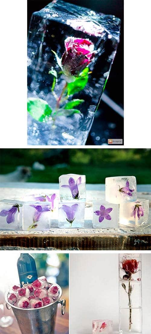 Декоративные цветы во льду